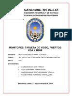 MONITOR-TARJETA-DE-VIDEO-HDMI-Y-VGA-2º-MONOGRAFIA-OFICIAL (1)