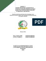 LAPORAN PUSKESMAS NILLA SARI LUBIS (18-012) LOVEA NABILLA (18-013)-dikonversi