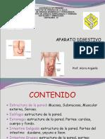 CLASE 5 Digestivo II