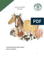 Apostila Anatomia dos Animais Domésticos