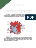 Anatomia Aparatului Cardiovascular