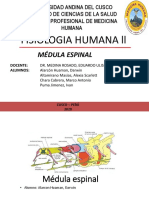 MÉDULA ESPINAL FINAL XD-1.pptx