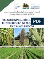 TECNOLOGIAS_AGRICOLAS_GRANOS_BASICOS