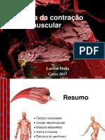 contracao muscular