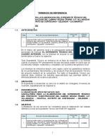 TERMINOS DE REFERENCIA expediente CARRETERA (2).doc