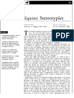 Equine Stereotypies.pdf