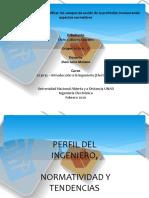 perfil del ingeniero