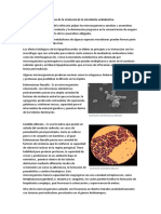Determinantes bioquímicos de la virulencia de la microbiota endodontica