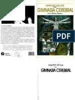 Ibarra, L. - Gimnasia cerebral. (1999)