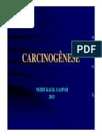 carcinogenese_neide_kallil