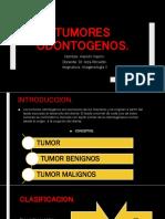 tumor odontogeno ultimo