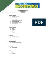 Guía de español ciclo 4.docx