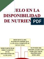 CAÑETE NUTRICION   EL SUELO EN LA DISPONIBILIDAD DE NUTRIENTES
