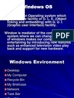 2.Windows environment