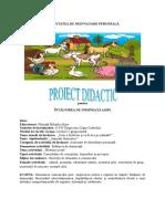 proiectADP
