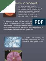 Geometría en la Naturalezaa.pdf