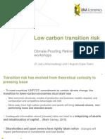 Transition Risk - Brent Cloete DNA Economics.pdf