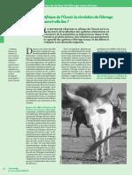 pdf_p12_15_Cadrage_dossier