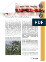 Honeycrisp Growth and Cropload