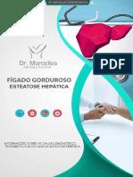 1558611315e-Book_Figado_Gorduroso