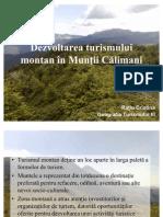 muntii calimani