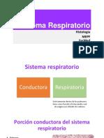 sistemarespiratorioteoria-140216182500-phpapp01