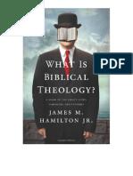 ¿Qué es la Teología Bíblica Una Guía de la Historia^J Simbolismo y Patrones de la Biblia - James Hamilton