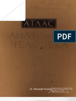 Anatomy Atlas (R.D. Sinelnikov Vol.3)