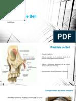 11062017 Parálisis de Bell completo básico.pptx.pptx