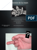 63- DESC MU anatomie main .pdf