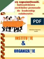 2-culturaorganizationala-170208091726