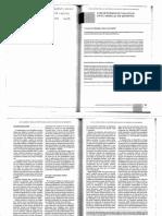 los estudios de vialidad en los estudios en el shincal de quimivil