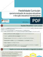 ACD_Flexibilidade_Curricular
