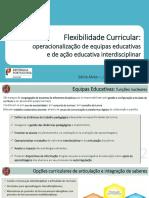 ACD_Flexibilidade_Curricular_OH.pdf