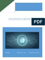 seguridad cibernetica.docx