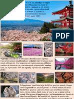 japonia.pptx