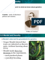6.3 Mendel heredity  PPT