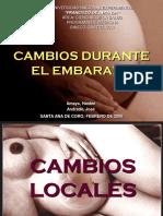 CAMBIOS DURANTE EL EMBARAZO.ppt