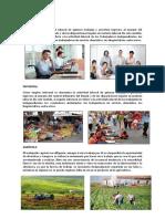 TIPOS DE TRABAJO.docx