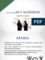 Clase 7 AFASIAS Y AGNOSIAS