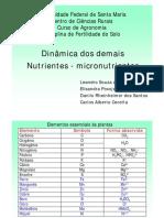 Aula de micronutrientes-junho-2009.pdf