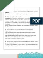 cuestionario formula roja.docx