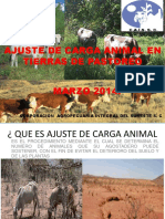 QUE ES AJUSTE DE CARGA ANIMAL.ppt