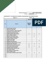 Formatos_Etapa_Escuela_E1-E2-E3_Medio_Curso_2019-2020(1).xlsx