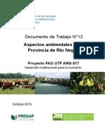 DT_12_Aspectos_ambientales