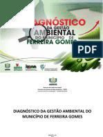 Diagnostico Ambiental Ferreira Gomes