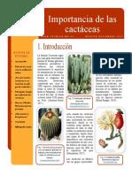 Importancia de las cactaceas