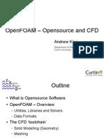 OpenFoam Examples