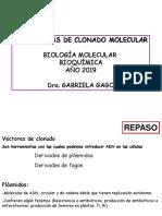 estrategias de clonado molecular-clase 2019-parte1