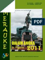 DDA Merauke 2011.